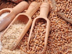 HOVEDARTIKEL: Kornmangel på verdensplan: <br>Udsigt til hungersnød uden omslag til Glass-Steagall