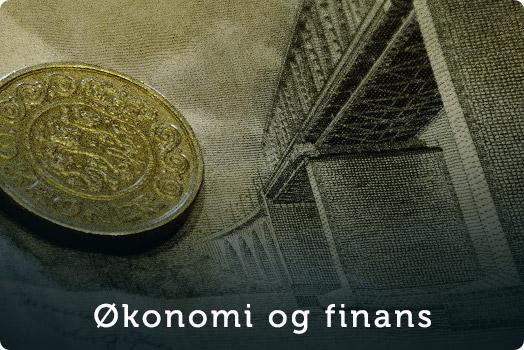 kategori-knap_oekonomi-finans