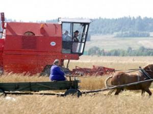 Grøn fascisme: Opkøb af landbrugsjord i Østtyskland og Østeuropa er i gang, <br>ansporet af EU's finansielle støtte til biobrændstof