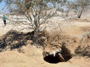 Sinai-terrorisme skal stoppes gennem økonomisk udvikling