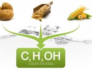 Det er på tide, Tyskland stopper sin maltusianske biobrændstofpolitik, så mennesker kan få mad