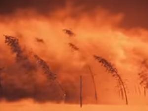 'Ingen overlevende' <br>Video fra LaRouchePAC <br>Danske undertekster