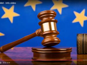 Info-video: <br>Hvad er det danske retsforbehold?