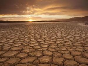 Verdensbanken vil promovere en fond for <br>Afrika på COP21 for at håndtere klimachok
