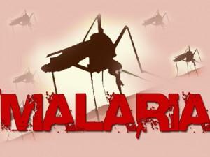 """Den 'grønne' bevægelses svindelnummer med DDT-""""forurening"""" <br>er skyld i 70 millioner malariadødsfald 1974-2014; <br>nu spredes den myggebårne Zika-virus eksplosivt"""