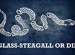 USA og Europa: Det er Glass-Steagall versus en finansiel <br>nedsmeltning af de transatlantiske økonomier, <br>med massedød i befolkningen til følge