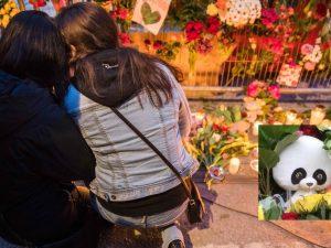 Terrorangreb i Stockholm: Nice/Berlin/London-stil. <br>Schiller Instituttets Ulf Sandmark: <br>Nu må Sverige samarbejde med de lande, <br>der bekæmper terrorisme