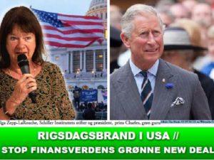 NYHEDSORIENTERING JANUAR 2021: <BR>Rigsdagsbrand i USA // Stop finansverdens grønne New Deal