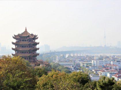 Erklæring fra kinesiske eksperter fra hele verden